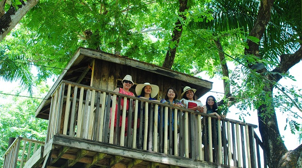 Sta Elena Fun Farm Tree House